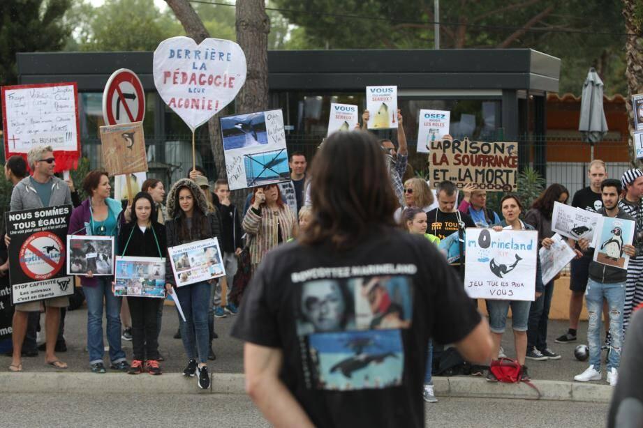 Moins nombreux que le 27 mars mais tout aussi déterminés, les « anti-captivité » ont manifesté face au parc marin.