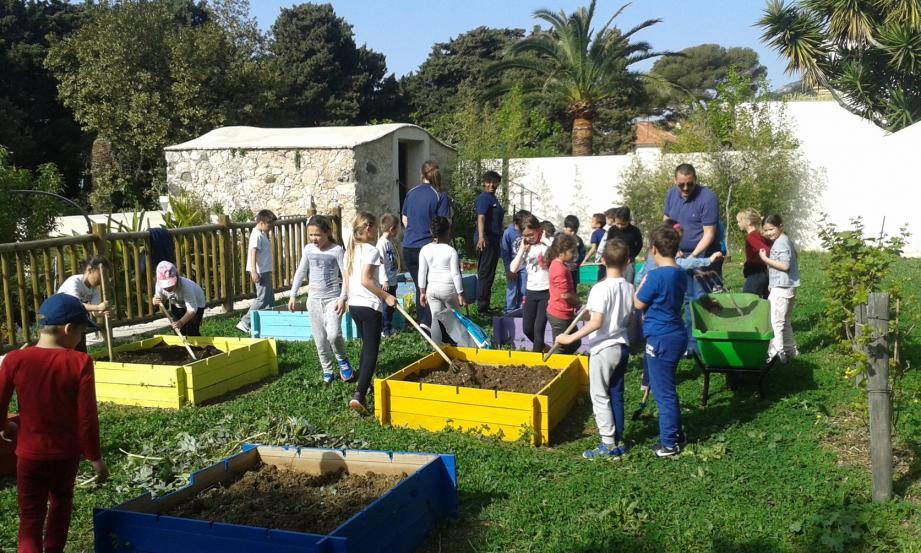 Les mains dans la terre, les enfants ont découvert ou redécouvert les joies du jardinage.