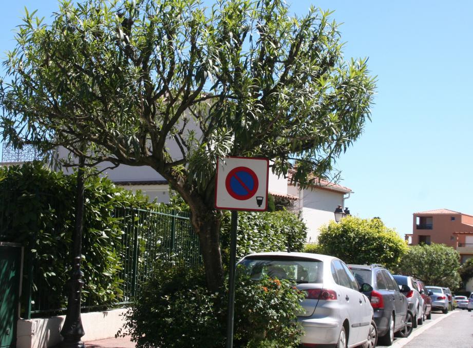 Les stationnements seront payants tous les jours à partir du 1er mai. ( Photo Sy.R)