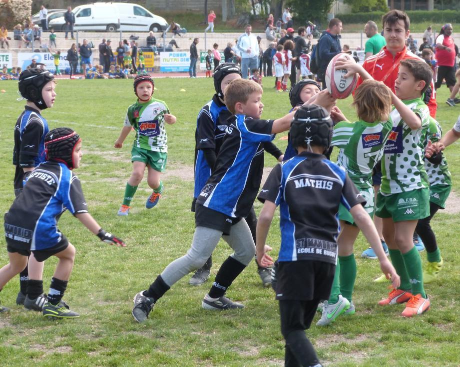 Les petits « vert et blanc » seront en tournois ce week-end à Saint-Laurent-du-Var et à Toulon.