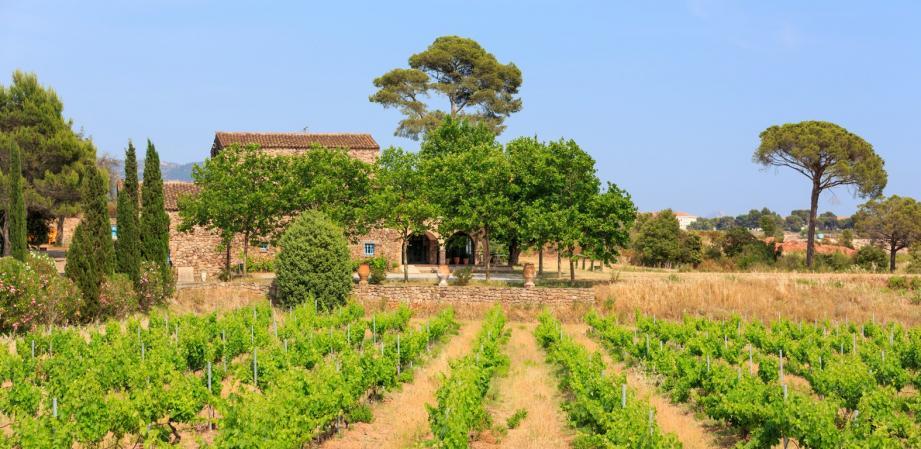 Samedi 30 avril, une journée consacrée à la Fête du Millésime vous attend au Château de Cabran.(D. R.)