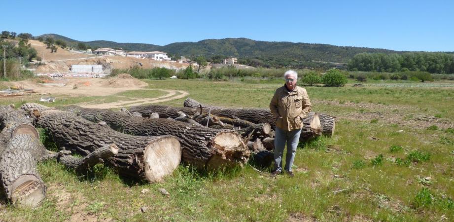 Michel Roche devant une partie de ses arbres abattus, dont plusieurs centenaires.