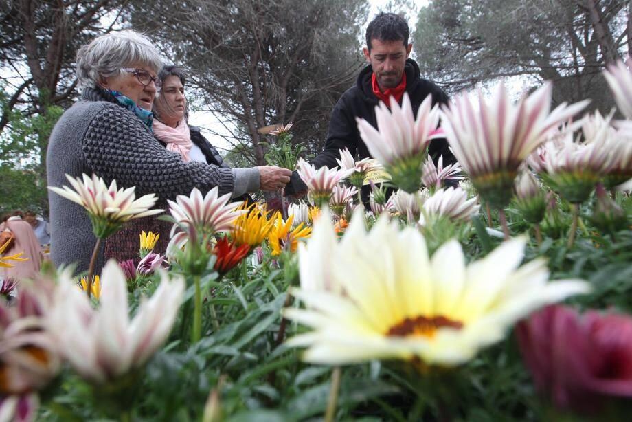 A Fréjus, la fête des plantes s'impose comme un rendez-vous incontournable pour tous les amoureux de la nature.