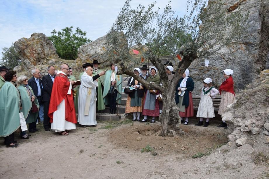 La bénédiction de l'olivier du château a été réalisée par le père Carli et le père Loriot, entourés de la commanderie du Rameau d'argent et des Provençales de Leï Roucas Dou Barri.