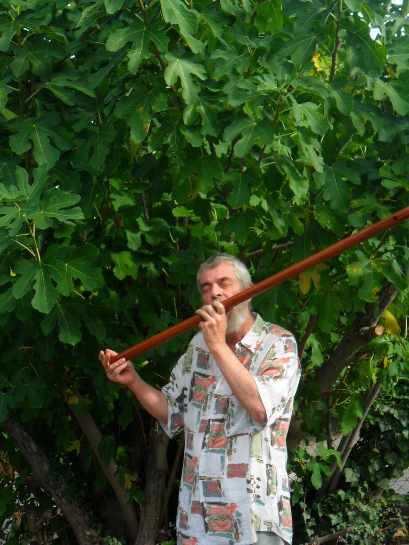Le flûtiste Gilles Patrat accompagnera le poète Christian Gorelli. Duo d'artistes à découvrir dans les allées du jardin botanique.