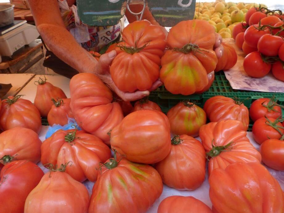 """Un étal de tomates """"cœur de bœuf""""."""
