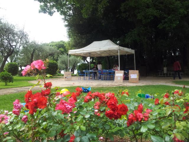 A noter aussi la démonstration de taille d'olivier à 14h30 suivie d'une intervention sur la couleur dans les jardins méditerranéens.
