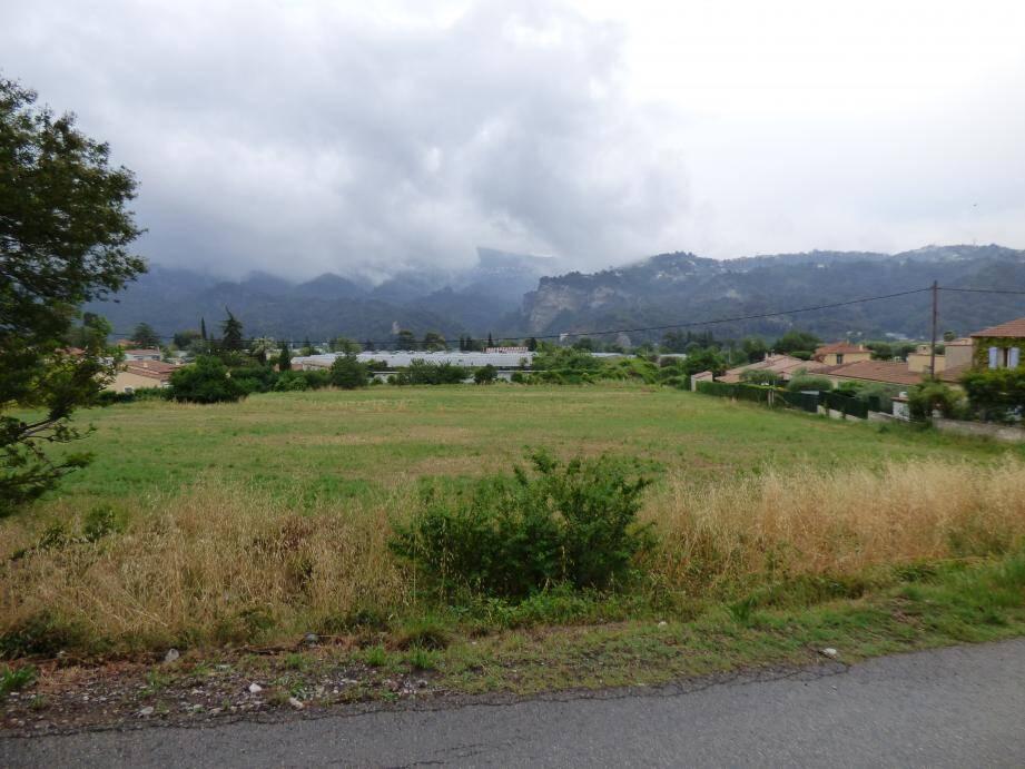 Vue du chemin de la Culasse, en aval de la route des Plans vers l'est, le terrain où le projet prévoit d'édifier 600 logements à l'emplacement des serres de roses.