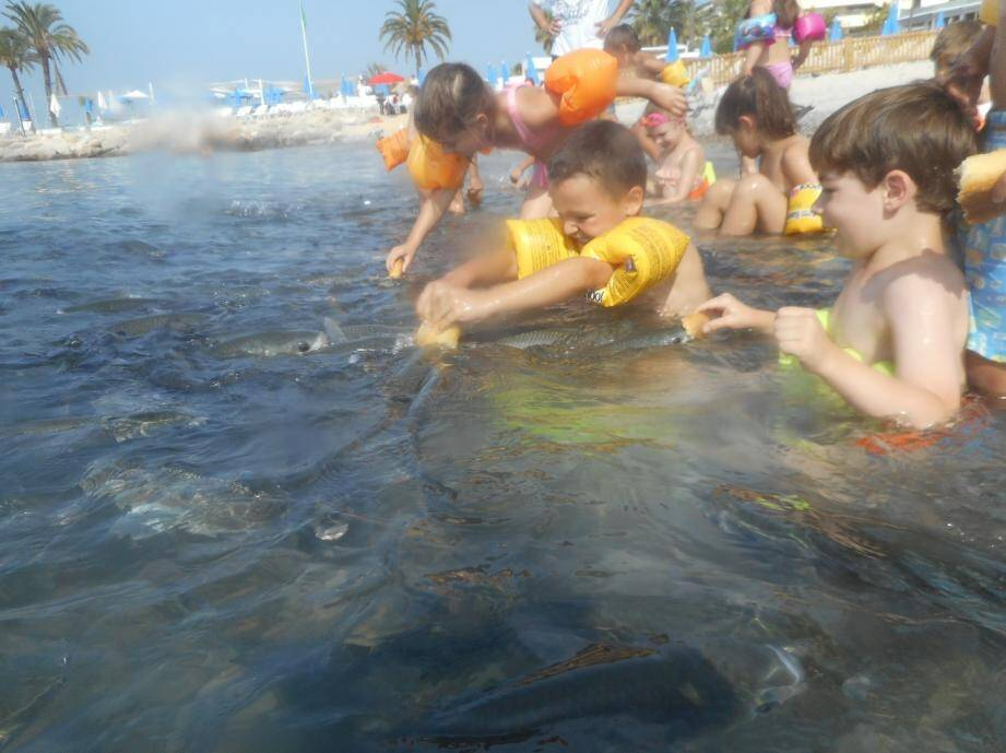 Les petits profitent de l'aquarium des Flots bleus pour s'approcher des poissons, notamment.(DR)