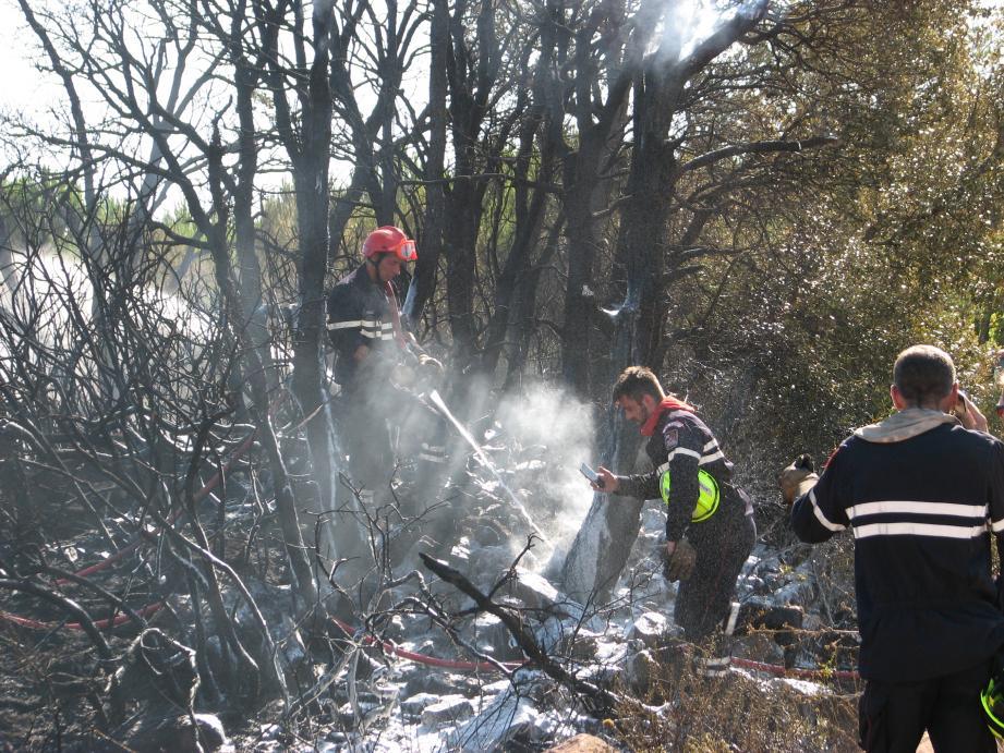 Les pompiers éteignent les flammes d'un incendie (illustrations)