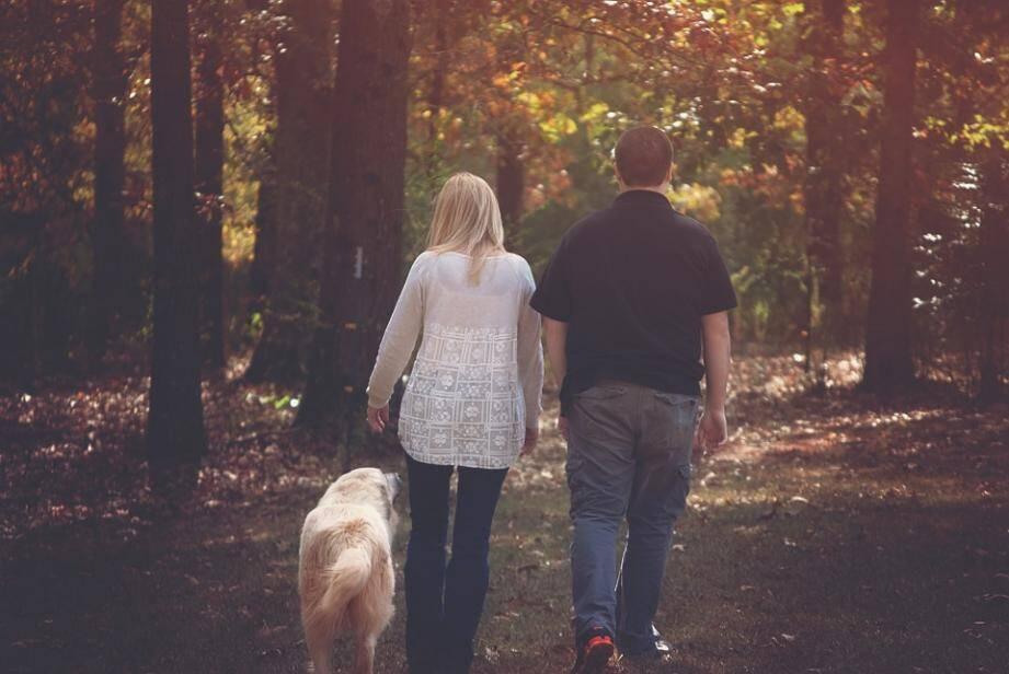 Préférez-vous votre votre conjoint... ou votre chien?