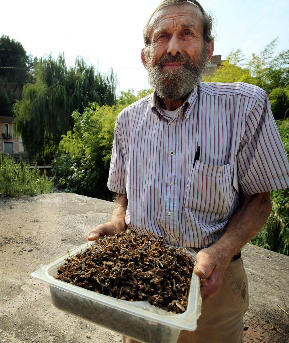 Depuis 2011, c'est lui, l'ennemi numéro un des abeilles. En provoquant des dégâts importants dans les ruches du Mentonnais, il met à mal la production de miel et la pollinisation des fleurs.