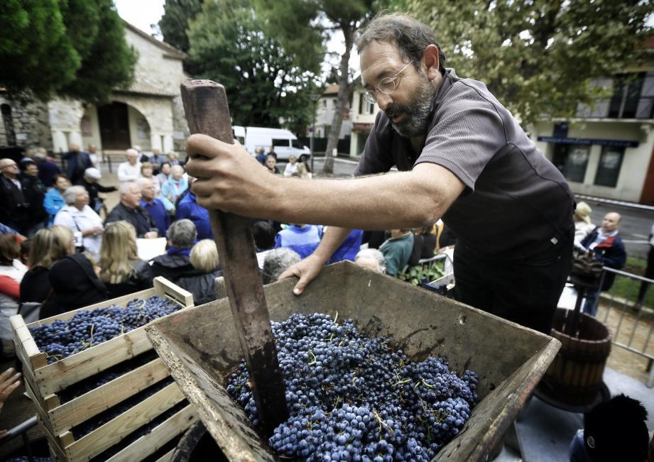 L'an passé, pour le retour des vendanges, ce sont plus de 700kg de raisin qui ont été passés dans le pressoir sur la place Jean-Aude. Record battu samedi?