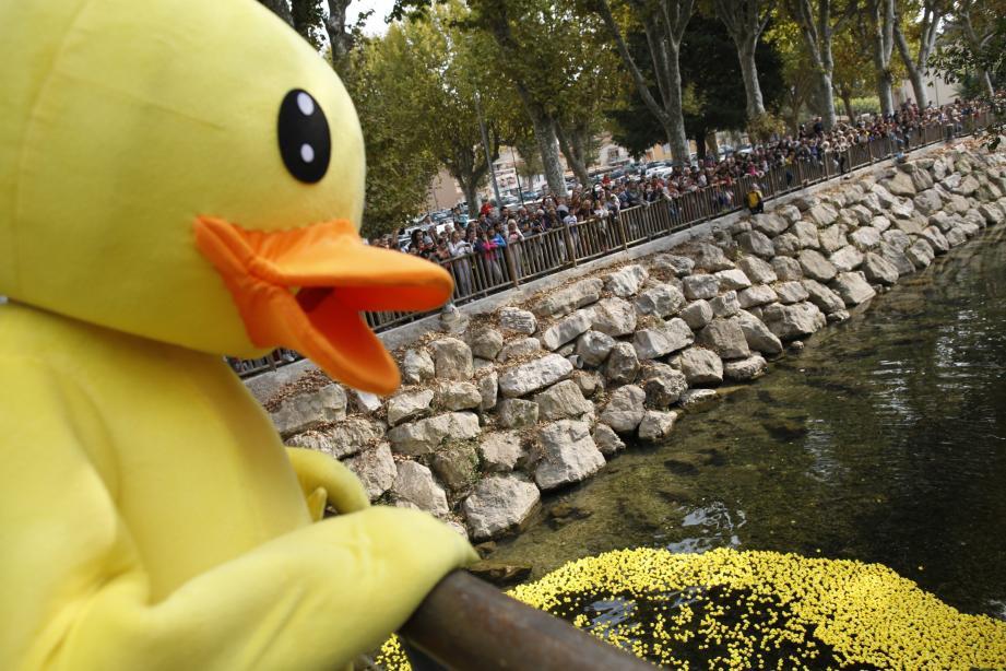 Dimanche, Villeneuve-Loubet a accueilli la première Duck race de la Côte d'Azur : 10 000 canards qui ont fait la course sur le Loup au profit de la bonne cause.