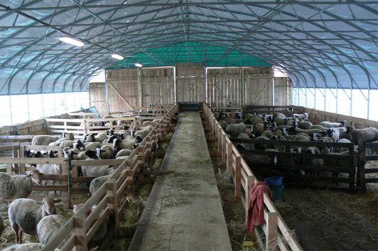 Brigitte et Jean-Patrick Roggeri aimeraient pouvoir financer un abri de ce type pour développer leur activité de bergerie dans le Mercantour.(D. R.)