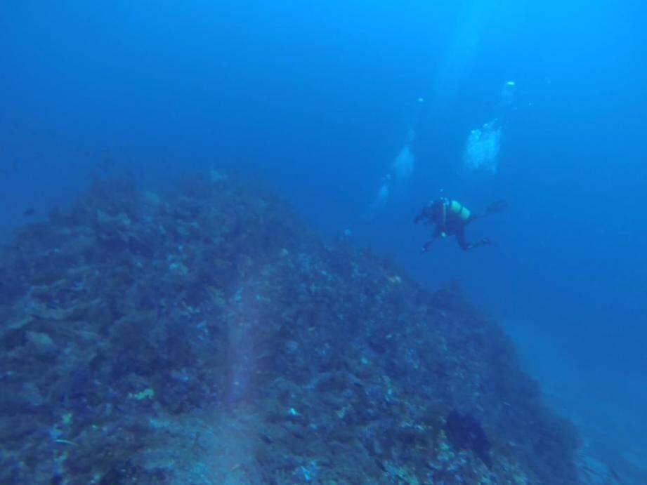 Pas d'interdiction signalée pour cette zone. Pourtant, même si le dépôt est désaffecté, cela ne veut pas dire qu'il n'y a plus d'explosifs. Accessible, le sec de la Péquerolle est fréquenté par des clubs de plongée. Les démineurs sous-marins de Toulon viennent parfois s'entraîner sur le site.(DR)