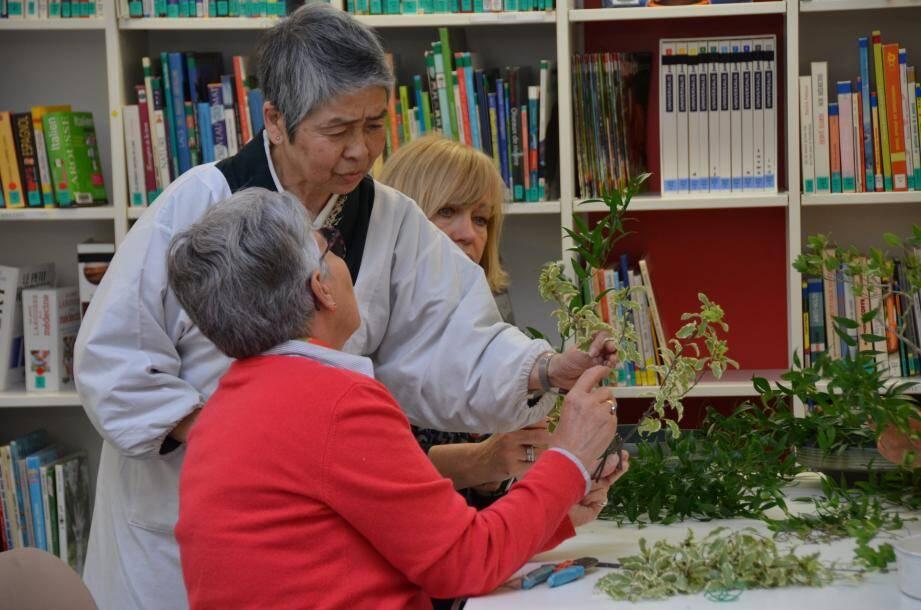 Noriko Onda, grand maître en Ikebana, sera de retour à la médiathèque, le 5 novembre, pour une nouvelle séance d'initiation à « l'art de faire vivre les fleurs ».