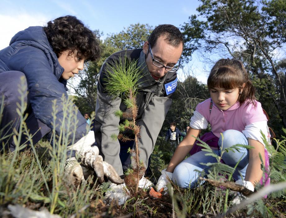 Thomas et Vayana ont planté un pin à la Croix des Gardes avec l'aide de Pierre-André Cottrant, éco-garde passionné et passionnant.