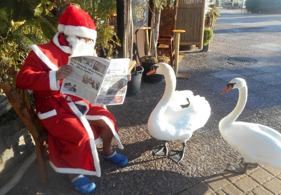 Le Père Noël et les cygnes lecteurs assidus de «Nice-Matin».(DR)