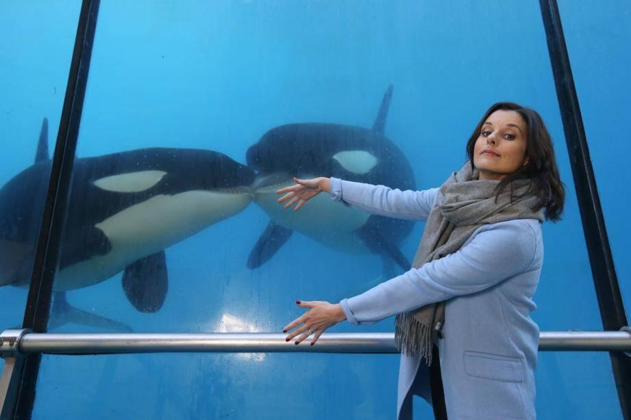 Faustine Bollaert aux côtés des orques de Marineland