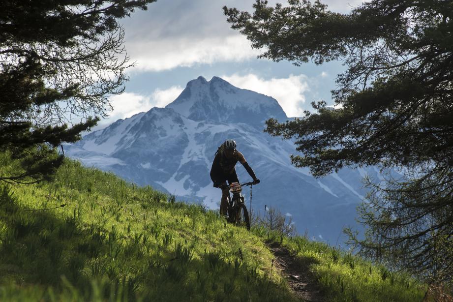 Un matin de mai sur les sentiers de la Transv, avec la cime de Gélas en décor de fond.