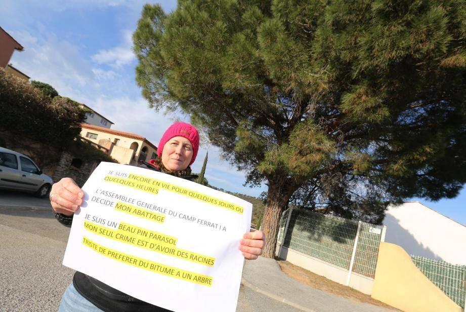Sur le pin, Fabienne a déposé une affiche : « Je suis encore en vie pour quelques jours ou quelques heures. L'assemblée générale du Camp Ferrat I a décidé de mon abattage. Je suis un beau pin parasol. Mon seul crime est d'avoir des racines. Triste de préférer du bitume à un arbre ».