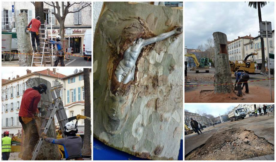 Lundi matin, l'entreprise d'élagage a abattu à la tronçonneuse les cinq arbres, mais a pris toutes les précautions pour conserver les bouts du tronc contenant les crucifix.