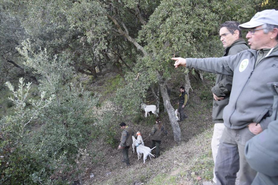 Découvrir le monde de la chasse en toute tranquillité, sans  avec  fusils !