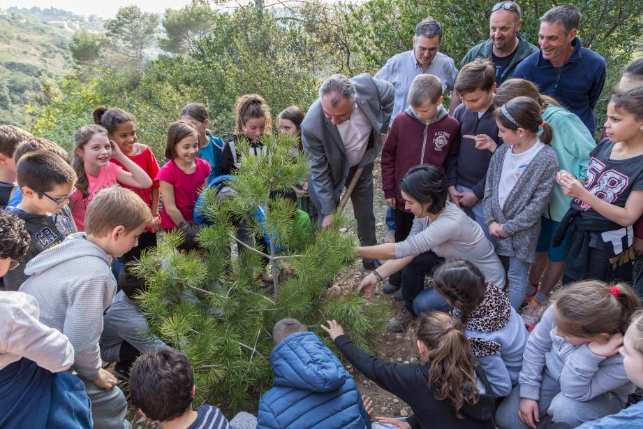 Depuis trois ans, la commune participe à cette opération, appelée précédemment « + d'arbres, + de vie». Au total cette année, ce sont 290 arbres qui devraient être plantés par les pitchouns. Dix de plus que l'année passée et quatre-vingt-dix de plus qu'en 2015.