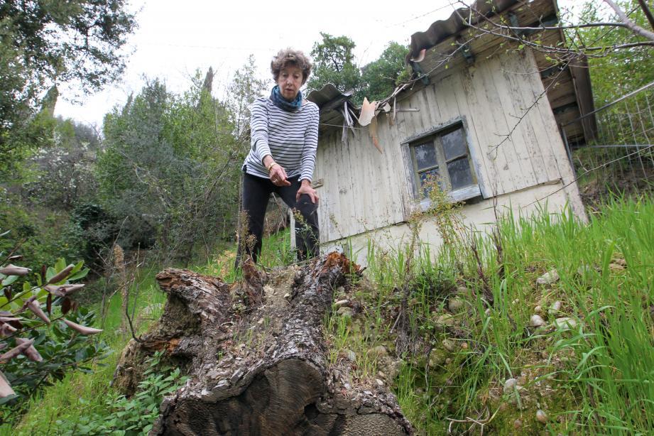 « Depuis 2010, je ne peux pas recevoir mes enfants, mes petits-enfants, à cause du danger qui persiste », explique Fabienne Villani, la propriétaire. Une chute d'arbre en 2010. Une autre en 2012. Un éboulement de la maison d'en face, en 2014. Une longue bataille juridique. Un récit empli de détresse.