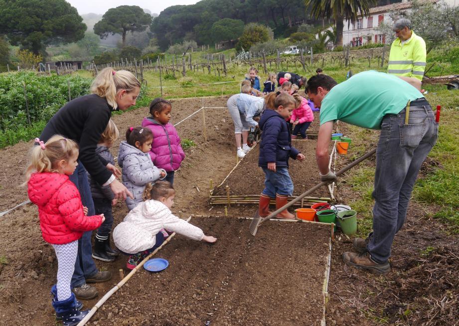Au domaine du Vallon des Bouis, Amélie et Nicolas Drion ont encadré le premier atelier de culture bio destiné au tout-petits de l'école Gérard-Philipe.(F.Ba.)