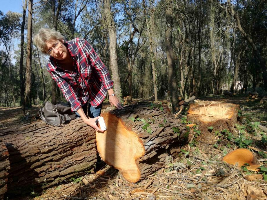Cathy Thirion de l'association Sauvons la forêt sur le site face au lycée.
