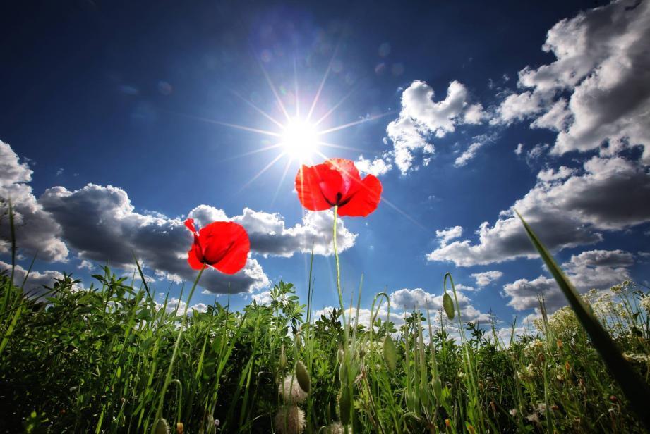 En mars, le soleil a d'ailleurs pleinement à vingt reprises.