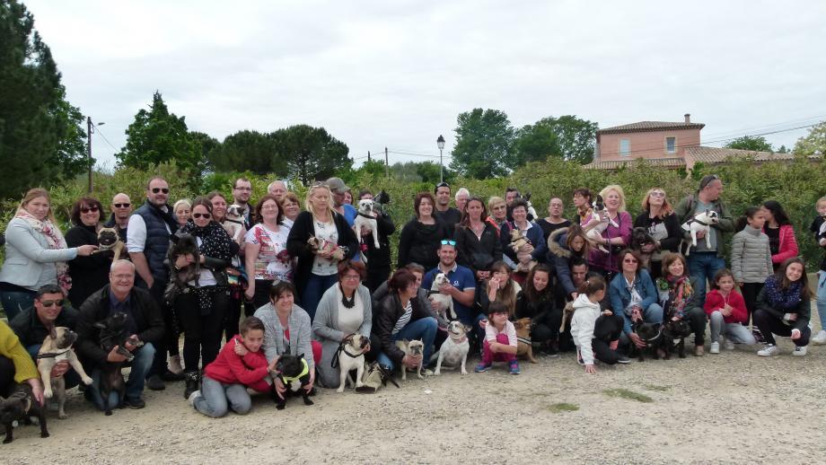 Les maîtres et leurs animaux ont été réunis par l'association « Rescue Boule ».