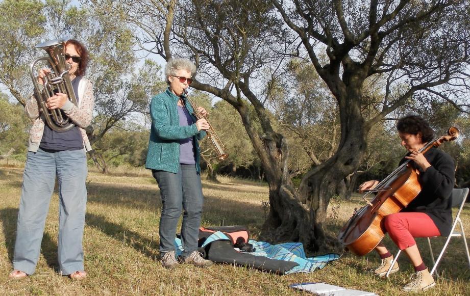 Les Musiciennes Karine, Sylvie et Marie-Pascale  sous les oliviers de Porquerolles.