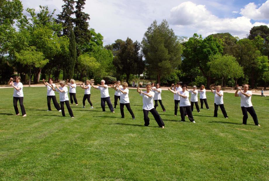 Un stage de Qi Gong et de Tai-chi-chuan est programmé du vendredi 9 au dimanche 11, dans le parc du Château.