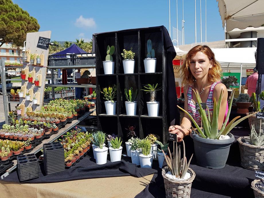 À la découverte des plantes grasses économes en eau.