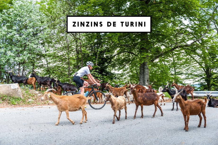 Pour le tournage d'une petite vidéo de promotion du « brevet des zinzins du col de Turini »,  le vidéaste breillois est à la recherche de figurants en tenue loufoque.(Illustration Lez'art création)
