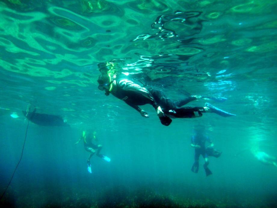 Même les fonds ont été nettoyés grâce à Cap Dive qui prêtait main-forte et matériel à l'opération.