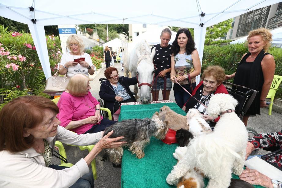 L'atelier de médiation animale a beaucoup plu aux résidents.