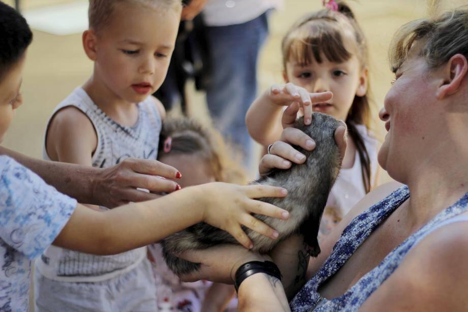 Les enfants ont eu l'occasion de caresser des furets, des chèvres et des poules.