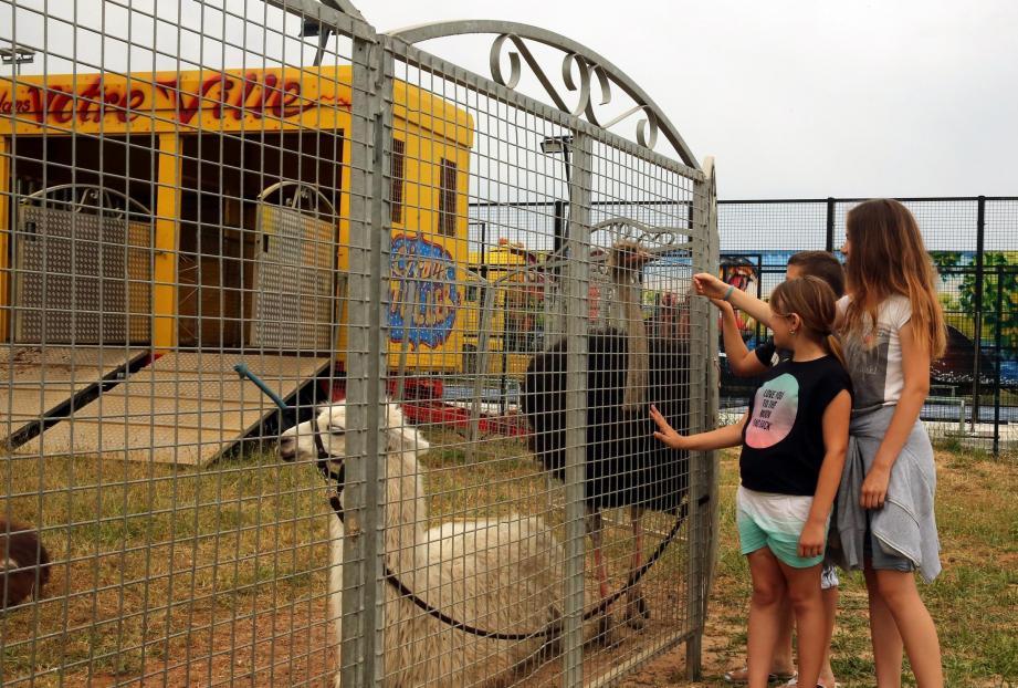Installation du Cirque Muller malgré un arrêté municipal  interdisant cette installationReporteur Victor TilletPhoto G.R. Le Luc 31 Mai 2017Installation du Cirque Muller malgré un arrêté municipal