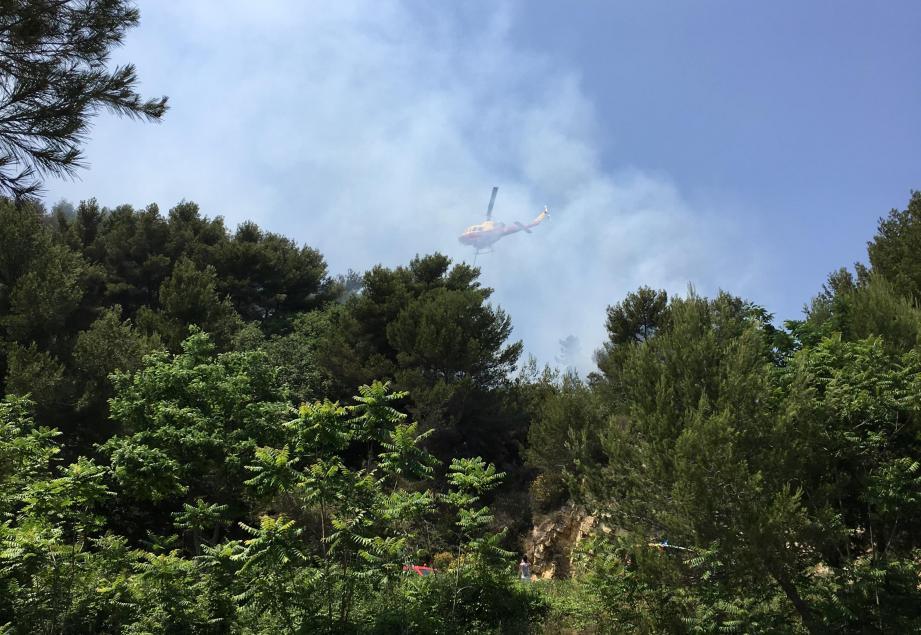 Le feu s'est déclaré à la lisière du parc naturel départemental du Cros de Casté.