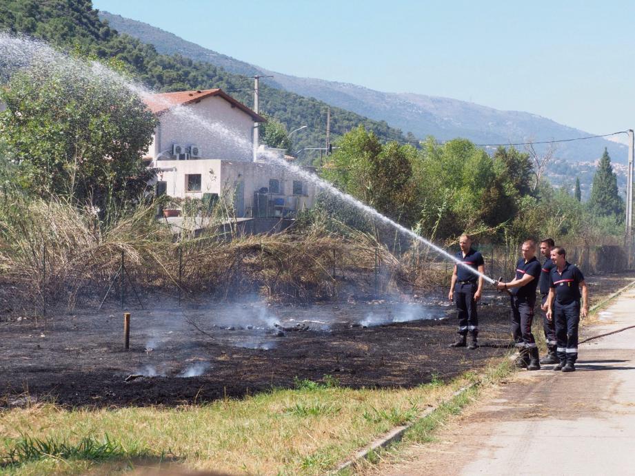 l'incendie vue du haut de la rue Marcellin-Allo, les arbres consumés par les flammes près des serres désaffectées du CNIH, partiellement détruites.