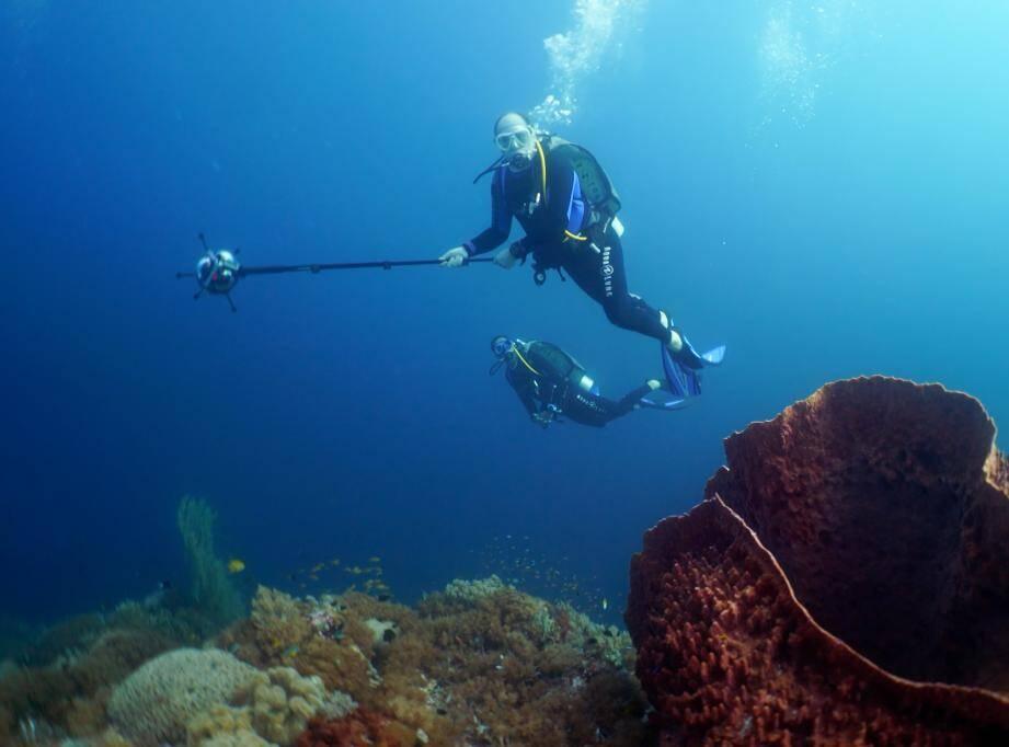 En avril 2016, le prince Albert a pris part à une expédition scientifique dans cette aire marine protégée, au bord de la mer de Sulu.