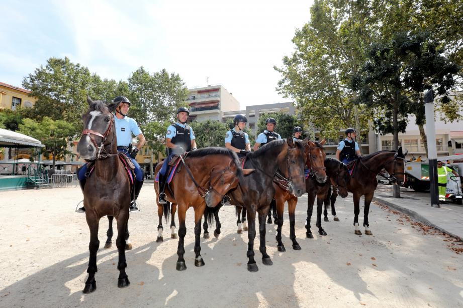 Huit chevaux de la Garde républicaine, habitués à battre le pavé parisien en temps normal, sont hébergés dans les écuries de l'hippodrome cagnois jusqu'au 31 août.