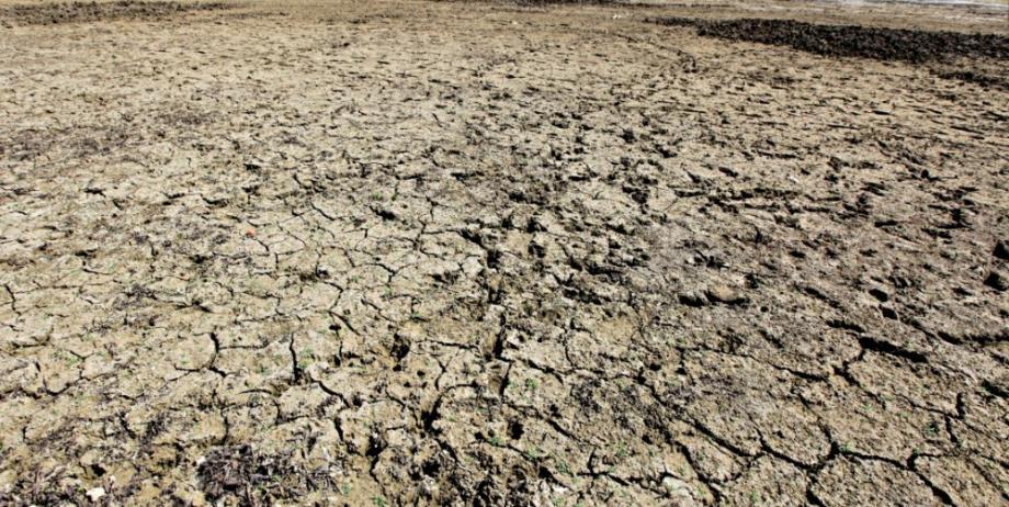 Sur la Côte d'Azur, la sécheresse inquiète.