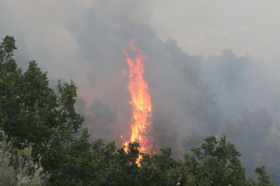 Le feu à Carros