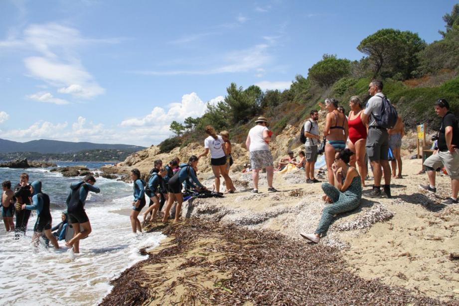 C'est de la plage de Jovat que part le sentier sous-marin mis sur pied pour permettre au public de découvrir les merveilles de la Méditerranée.