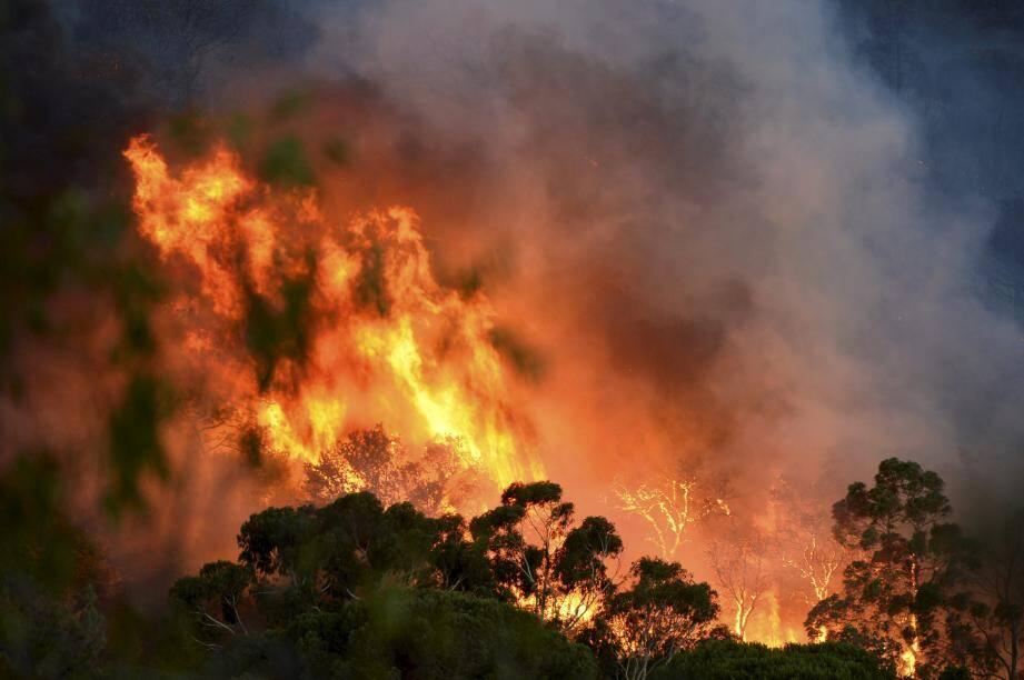 L'incendie à Gigaro.
